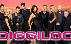 diggiloo_2014