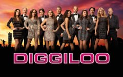 diggiloo_2015