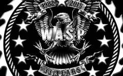 wasp_2015